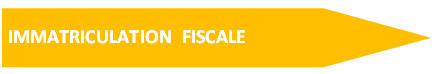 Immatriculation Fiscale